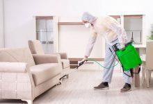 صورة شركة مكافحة حشرات بالرياض عمالة فلبينية  0542744146 واتساب